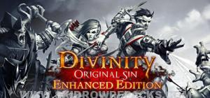 Divinity Original Sin Enhanced Edition Full Version