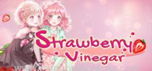 Strawberry Vinegar Full Version
